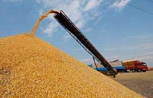武城县预计年烘干粮食50万吨推粮食产后服务